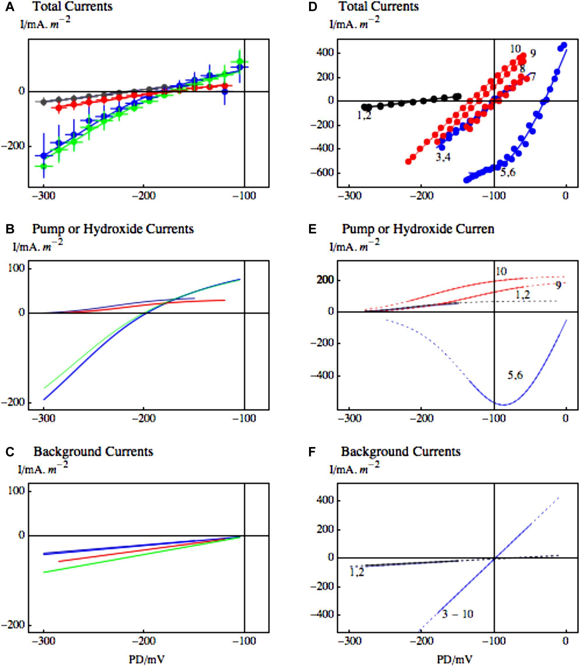 Zinc Carbon Cell Parts Functions Fpls G