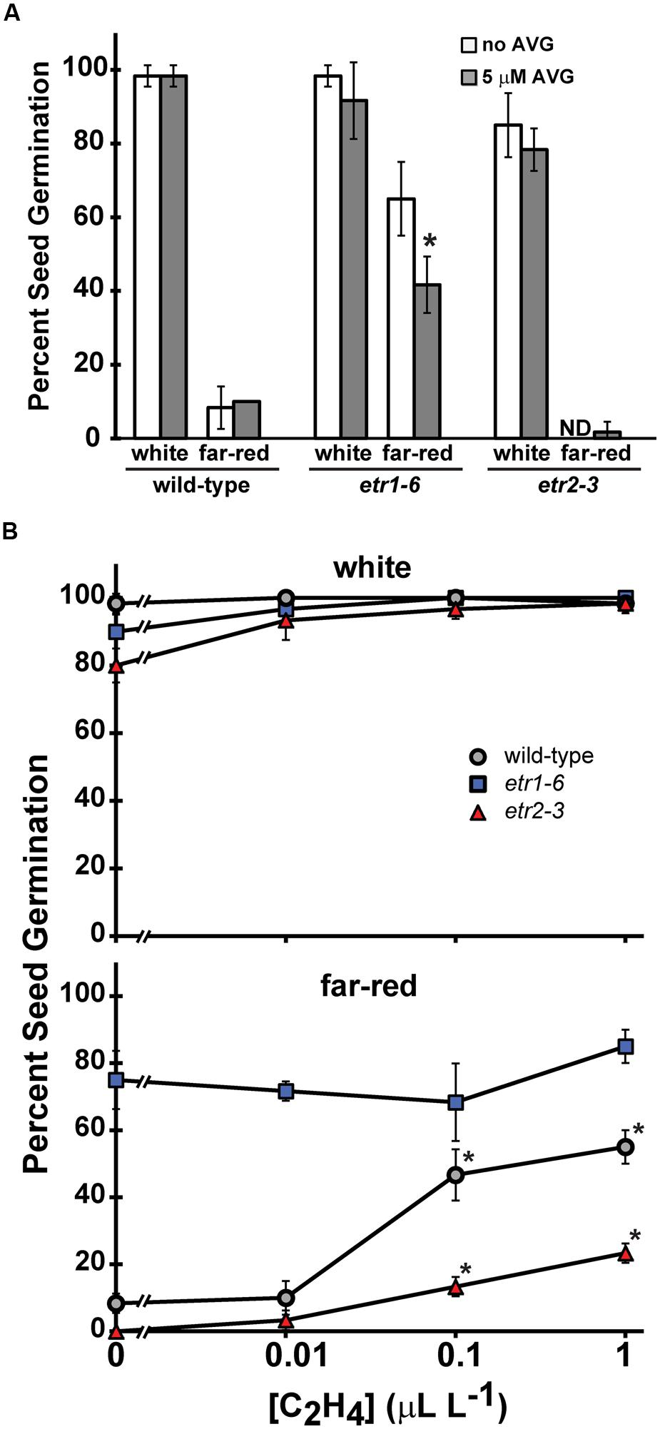 Frontiers Loss Of The Etr1 Ethylene Receptor Reduces Here Is A Diagram Monocot Seed And Its Typical Germination