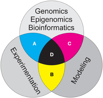 genetics and genomics essay Topics in advanced genetics  essay and problem-solving you  genomics – what information is out there and how do you get it.