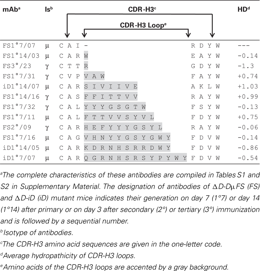 Improving The Accuracy Of Cdr H3 Structure Prediction: Clonal Progression During The T Cell-Dependent