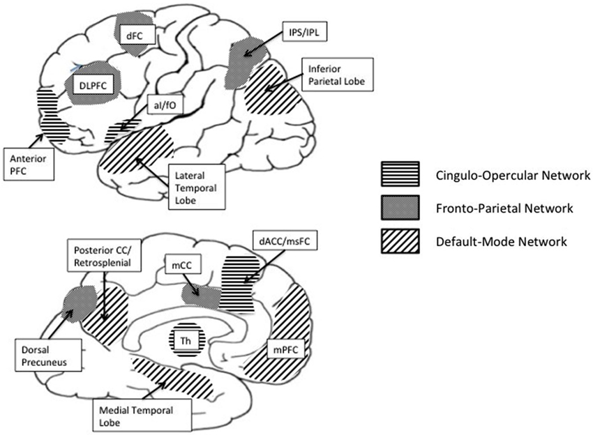 Login usingYou can login by using one of your existing accounts.                                                            Frontiers in Human Neuroscience                                                    Cognitive control in the self-regulation of physical activity and sedentary behavior