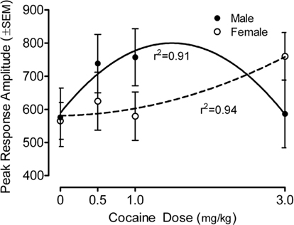Frontiers | Prenatal IV Cocaine: Alterations in Auditory