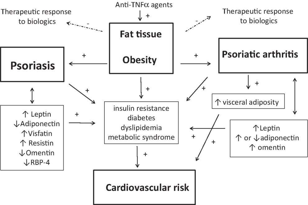 Management of Dyslipidemia in Adults