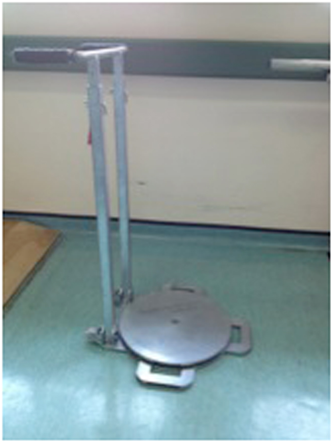 Frontiers The Use Of The Self Standing Turning Transfer