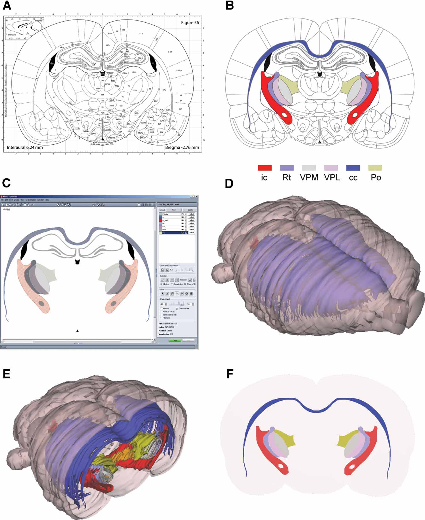 Frontiers Three Dimensional Atlas System For Mouse And Rat Brain