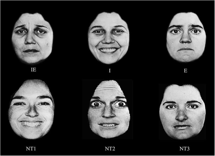 Facial Identity 62