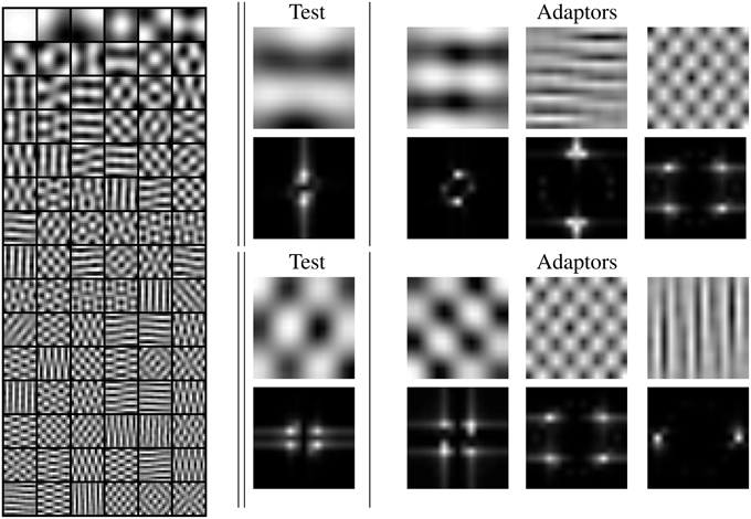 Frontiers | Visual aftereffects and sensory nonlinearities