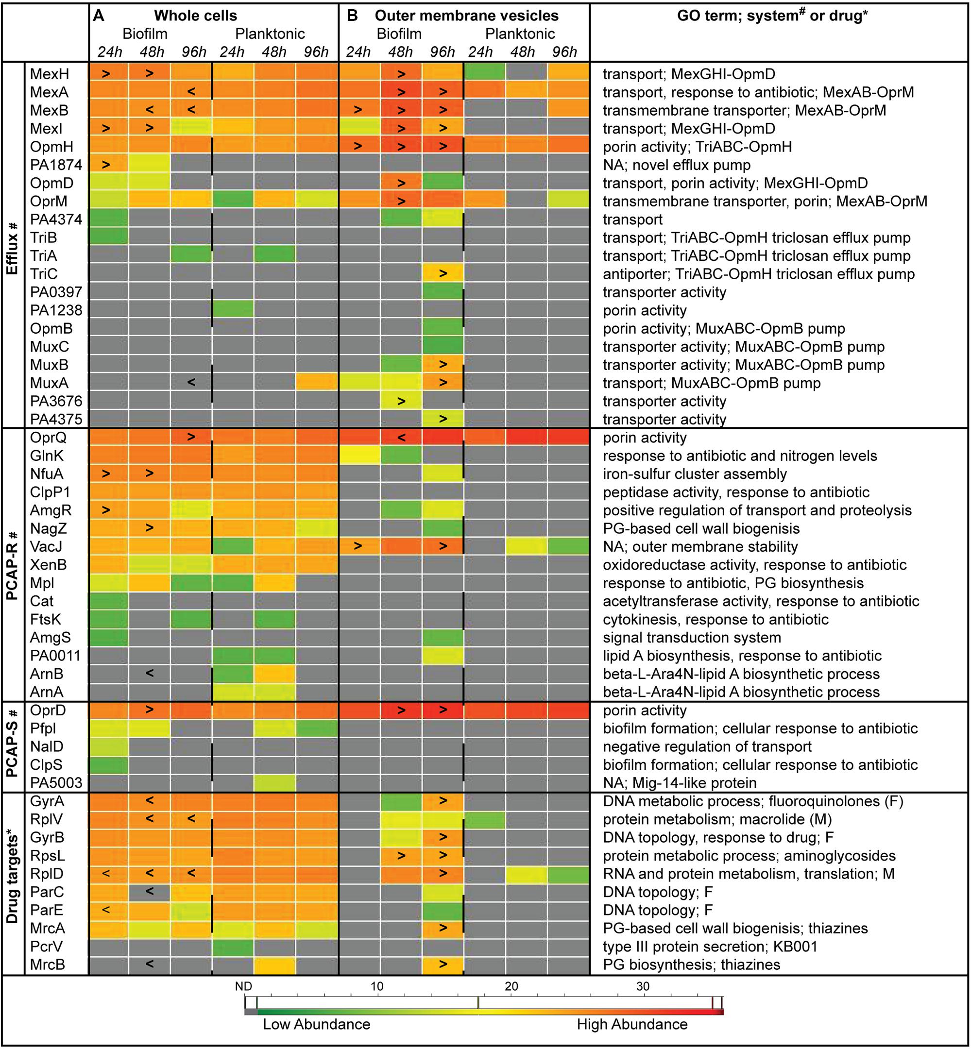 Antibiotic Spectrum Chart Sanford Antibiotic Spectrum Of