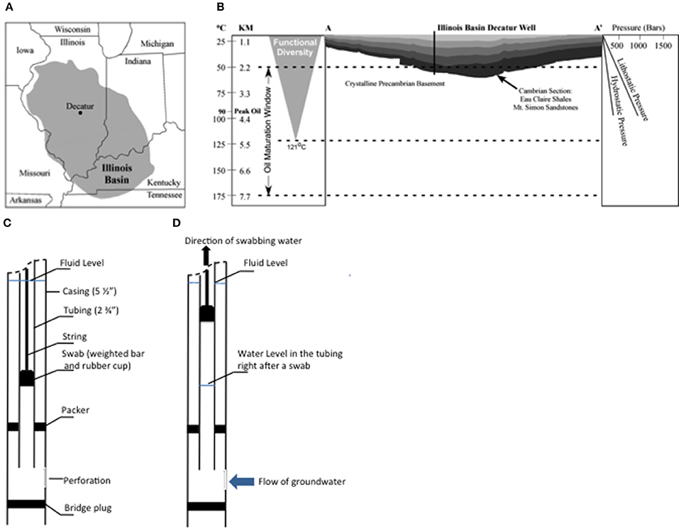 watershed diagram with labels