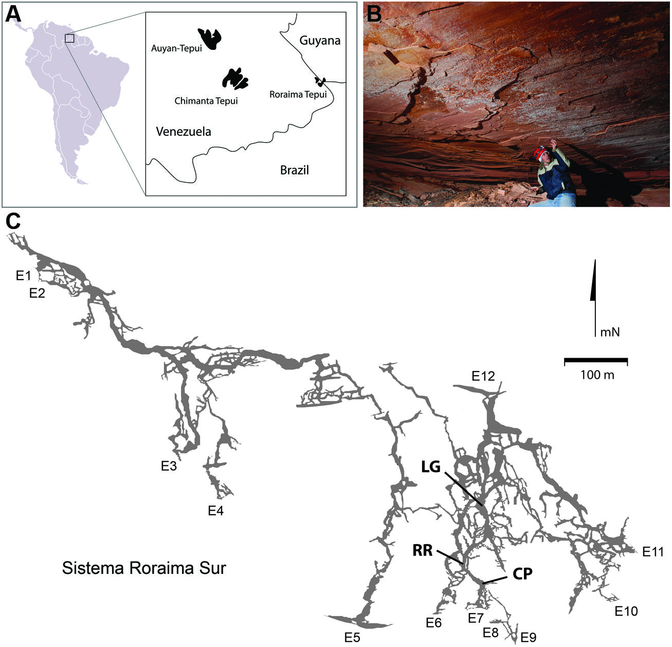 Lechuguilla Cave Map - The Best Cave