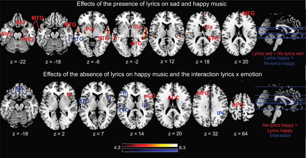 The Effect of Music on Human Health and Brain Growth