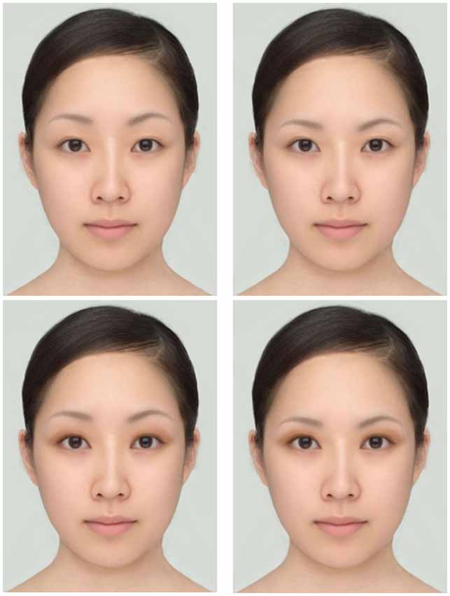 Frontiers A Real Life Illusion Of Assimilation In The Human Face