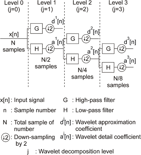 Frontiers | Wavelet Transform for Real-Time Detection of