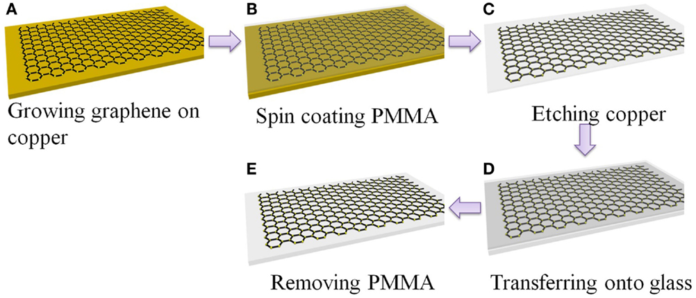 Frontiers Graphene Based Transparent Electrodes For