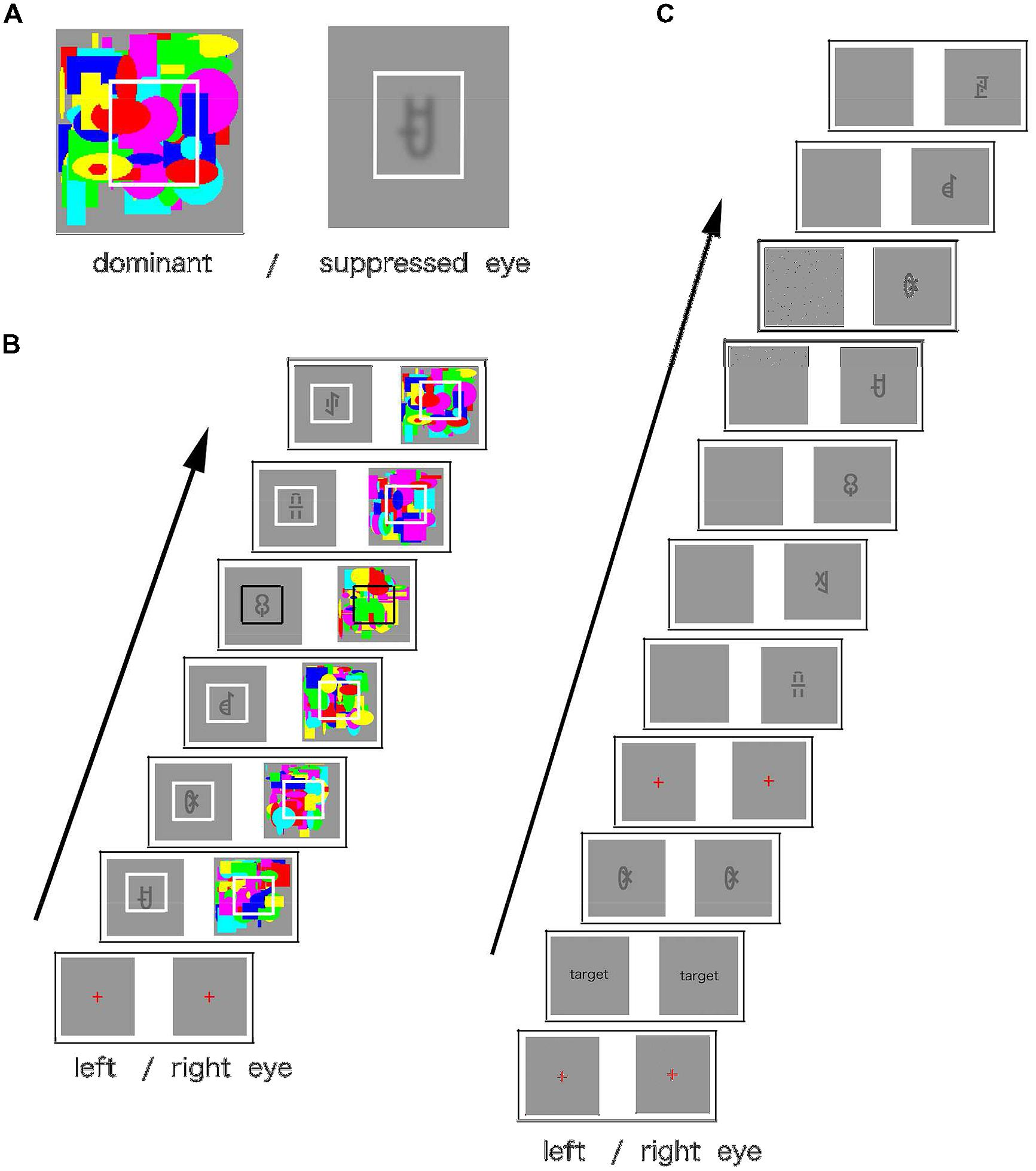 Frontiers - Serial order learning of subliminal visual ...
