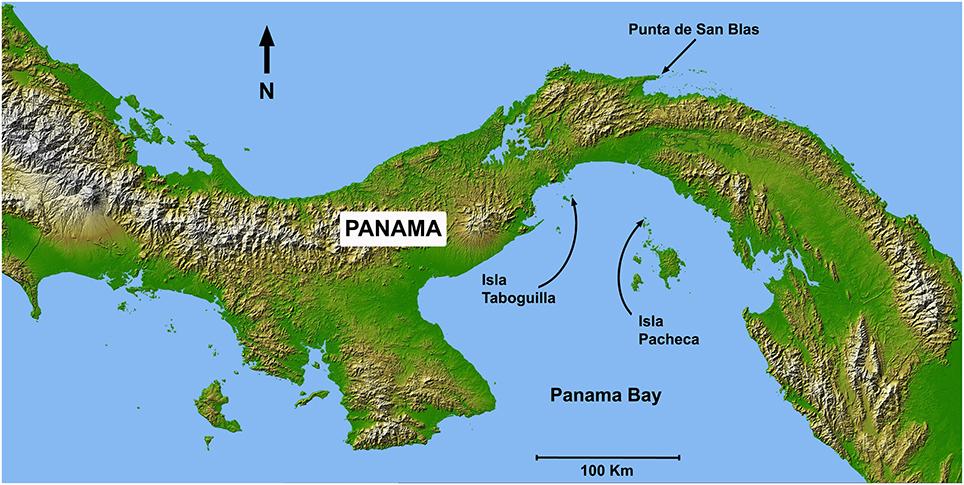 Temperature In Panama City Beach In September