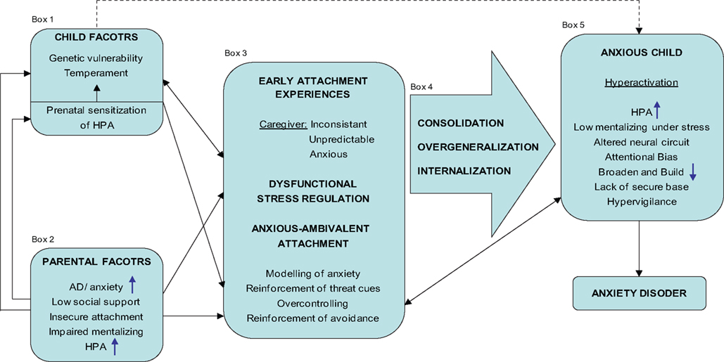 Comparing internal working models of attachment