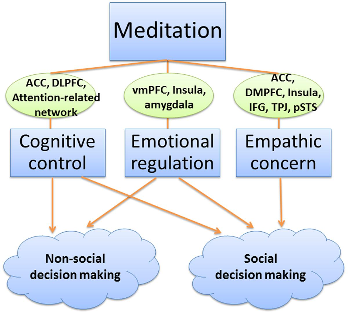 Frontiers | Calm and smart? A selective review of meditation