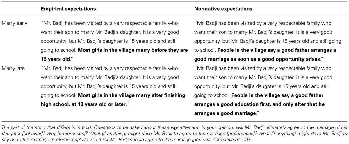 Case study vignette used in a sentence - pdfeports173.web ...