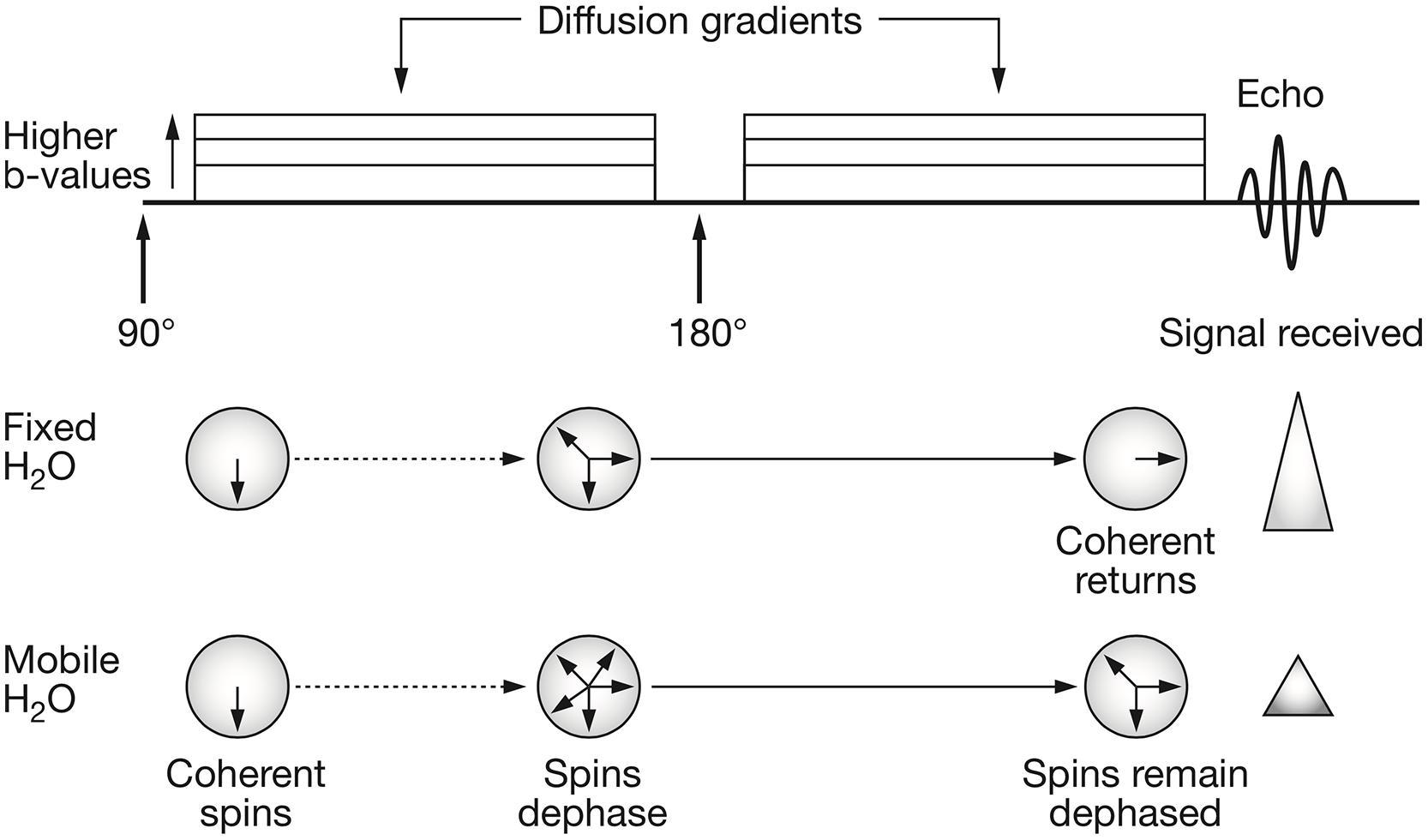 Rgb Wiring Diagram Mri - Trusted Wiring Diagrams •