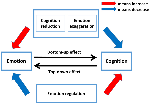 How Stress Influences Decision-making