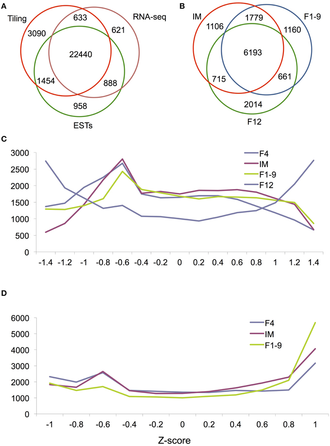 Frontiers Analysis Of Arabidopsis Floral Transcriptome Detection