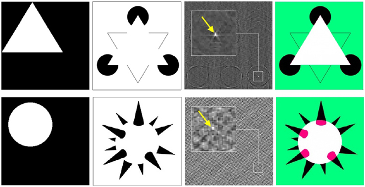 Frontiers | On the role of spatial phase and phase ...