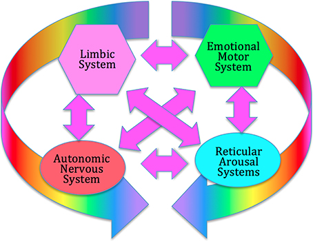 best Autonomic Nervous system and homeostasis images on