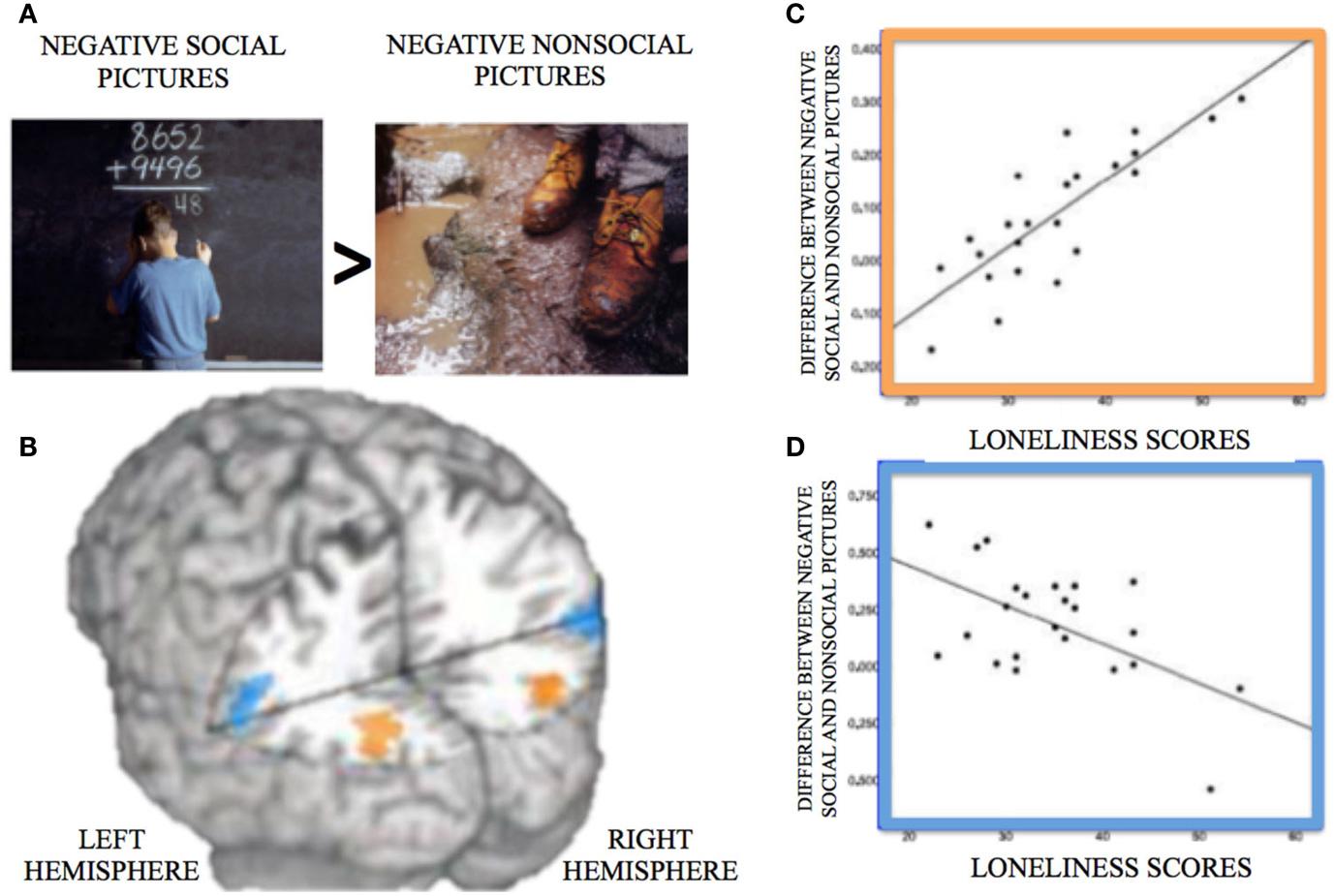 איור 2 - A. דוגמה לתמונות שהשתמשו בהן בניסויים של סריקה מוחית, אשר מייצגות חוויה שלילית (חברתית משמאל, לא חברתית מימין).