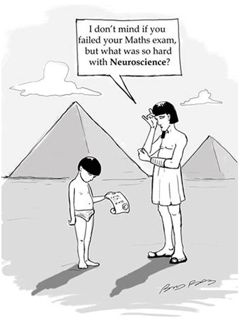 איור 1 - הומור מצרי עתיק [1].