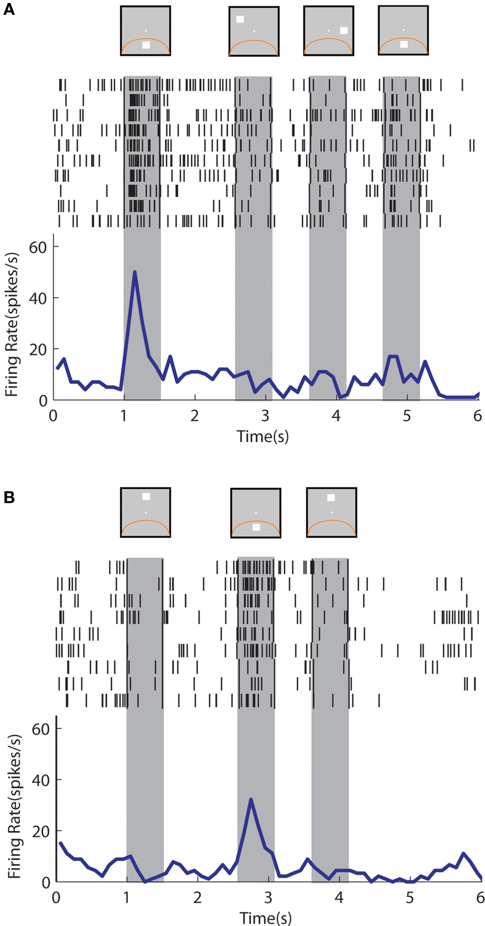 Frontiers Comparison Of Neural Activity Related To Working Memory Time Delay Circuits