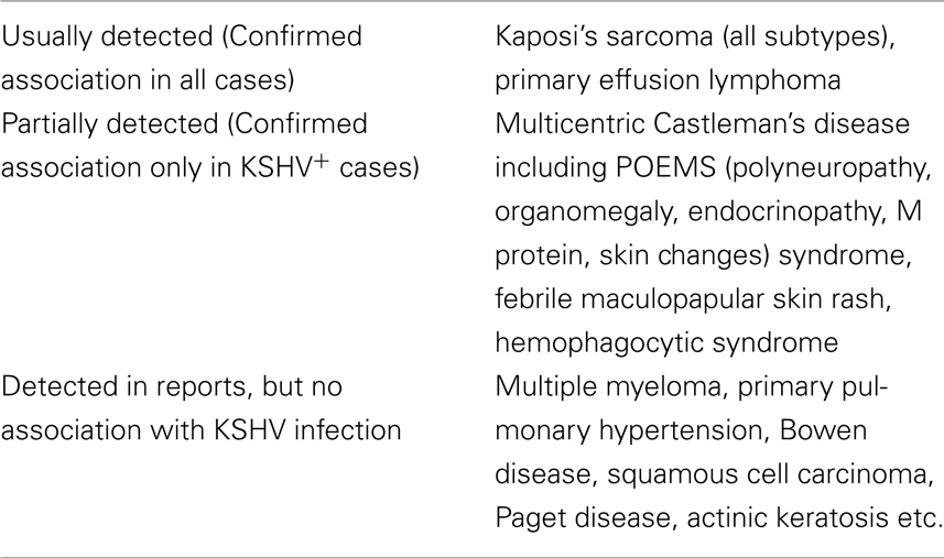 notch proteins and kaposis sarcoma essay Papers cyclin d1 expression and hhv8 in kaposi sarcoma margaret m kennedy, simon biddolph, sebastian b lucas, david d howells, steve picton, james o'd mcgee, ivan silva, volker uhlmann, karsta luttich.