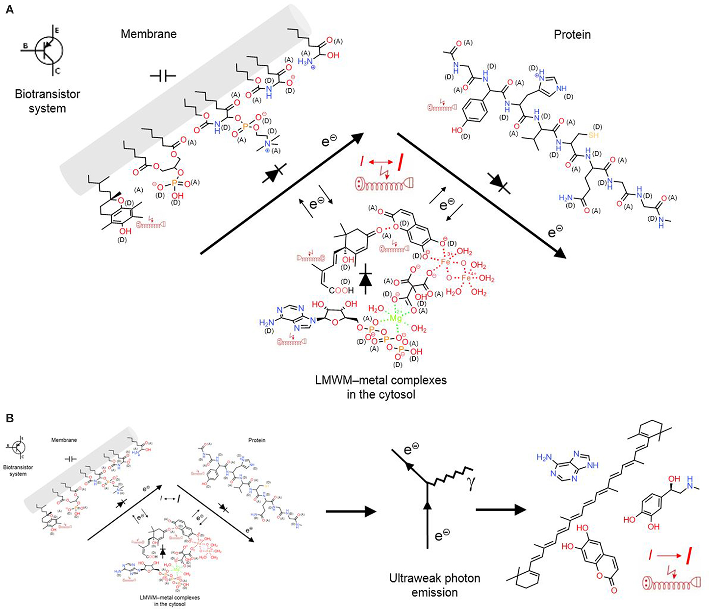 Frontiers | Low-molecular-weight metabolite systems chemistry ...