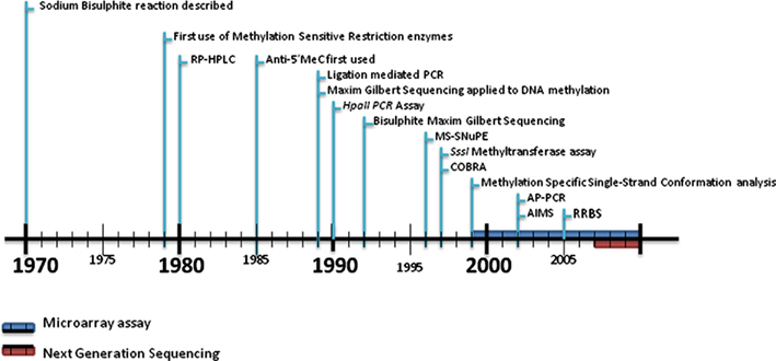 Frontiers | DNA Methylation: A Timeline of Methods and