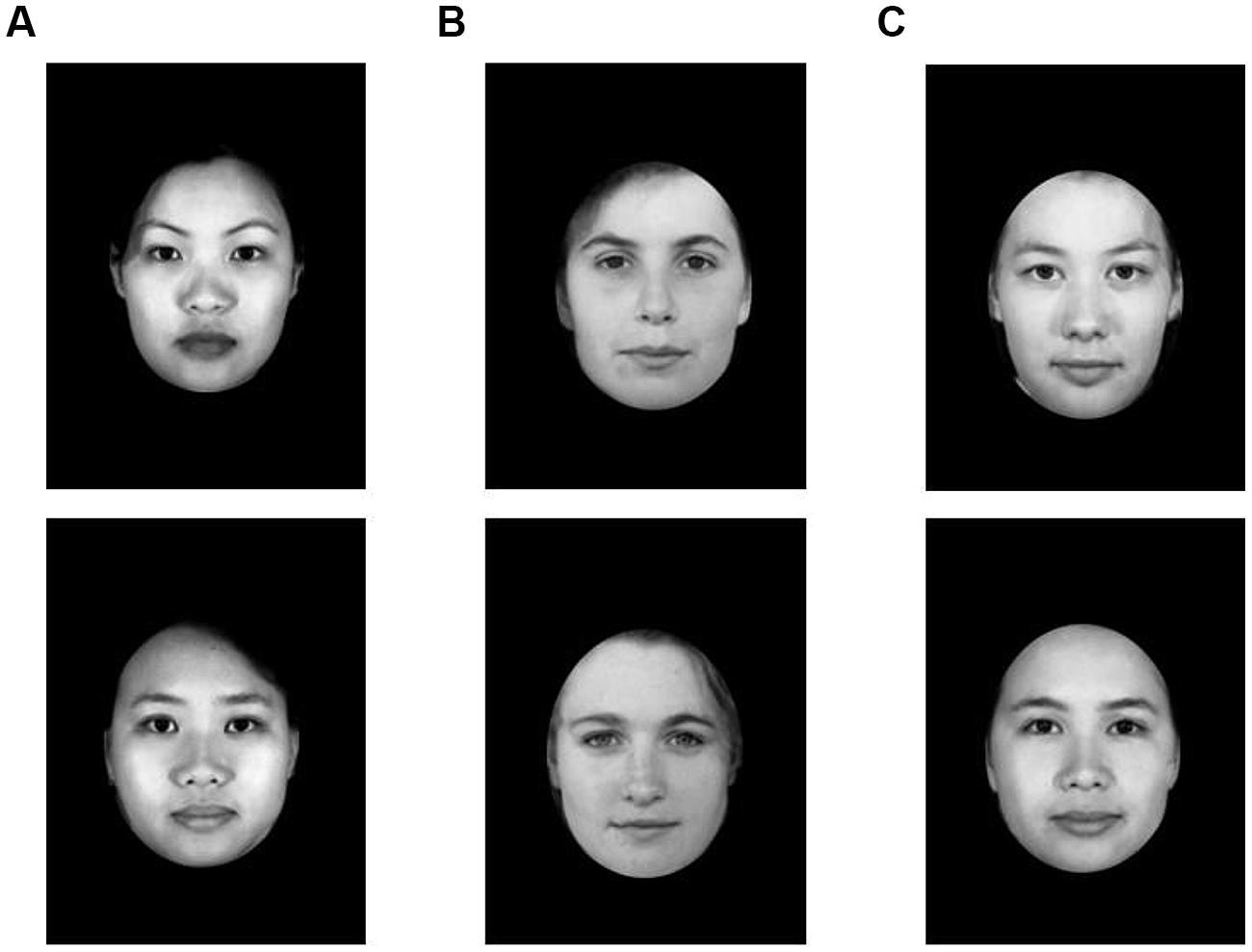Frontiers   Folk beliefs about genetic variation predict