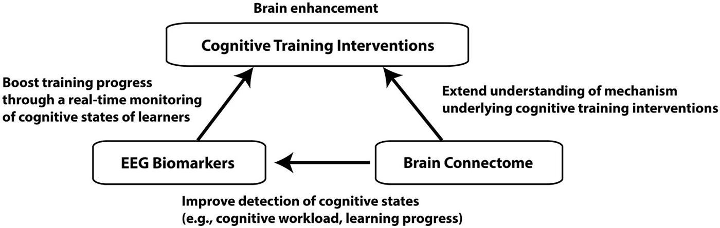 Frontiers | Brain enhancement through cognitive training ...