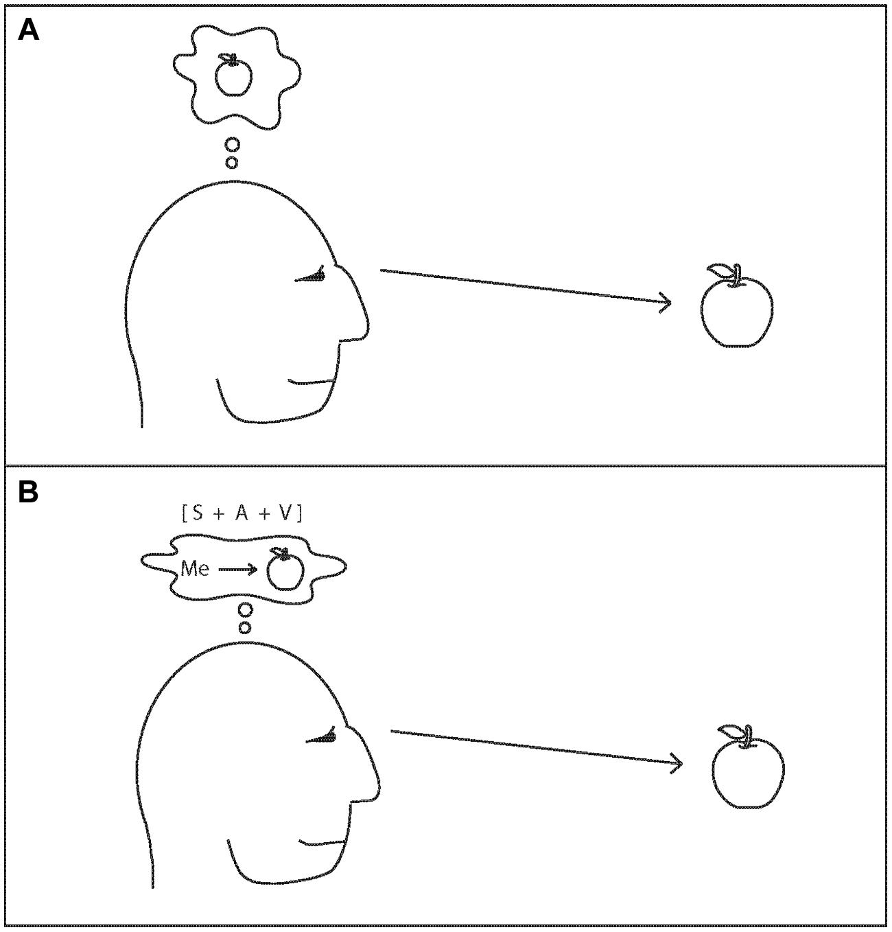 Frontiers | The attention schema theory: a mechanistic ... on