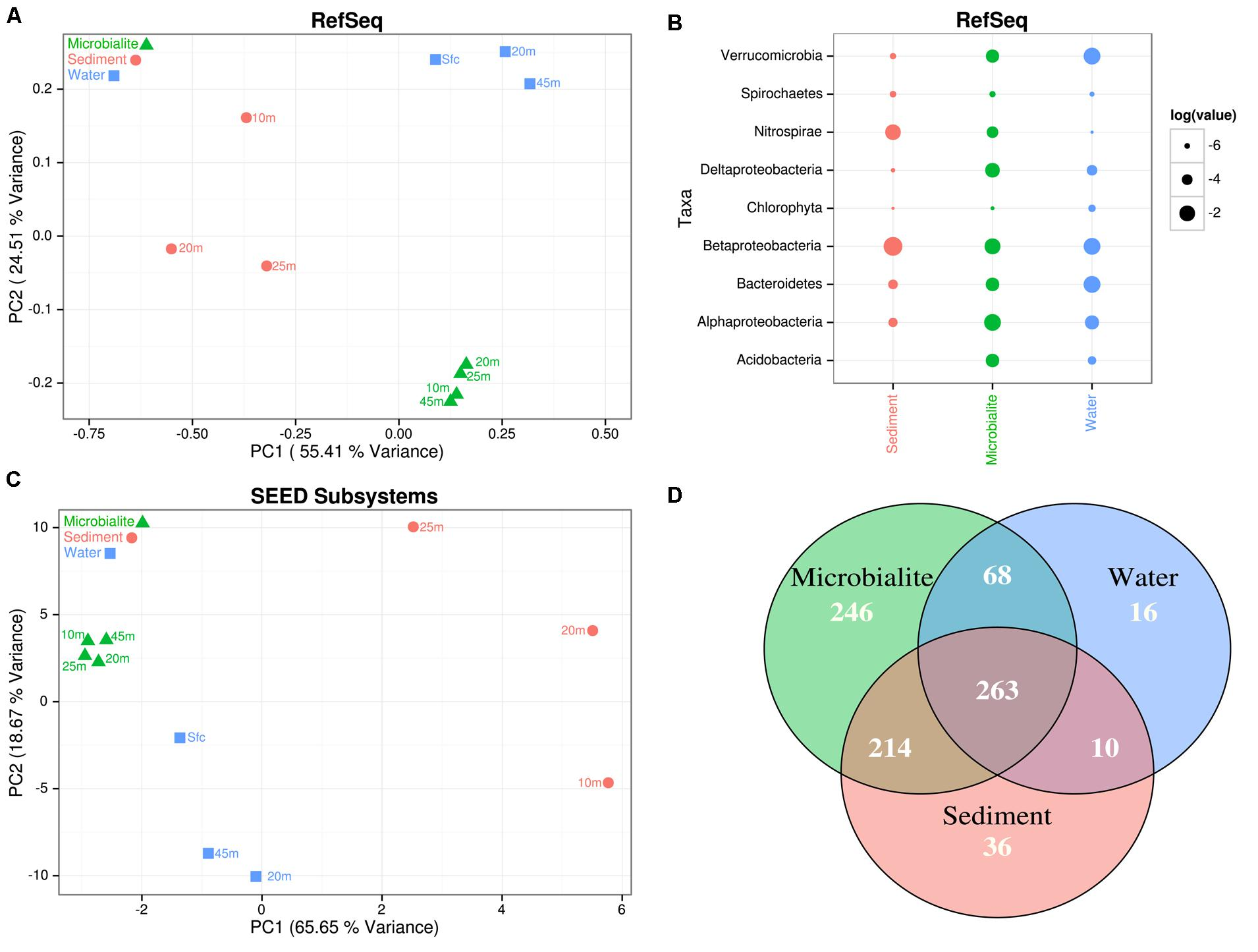 Frontiers metagenomic analysis suggests modern freshwater frontiersin pooptronica Image collections