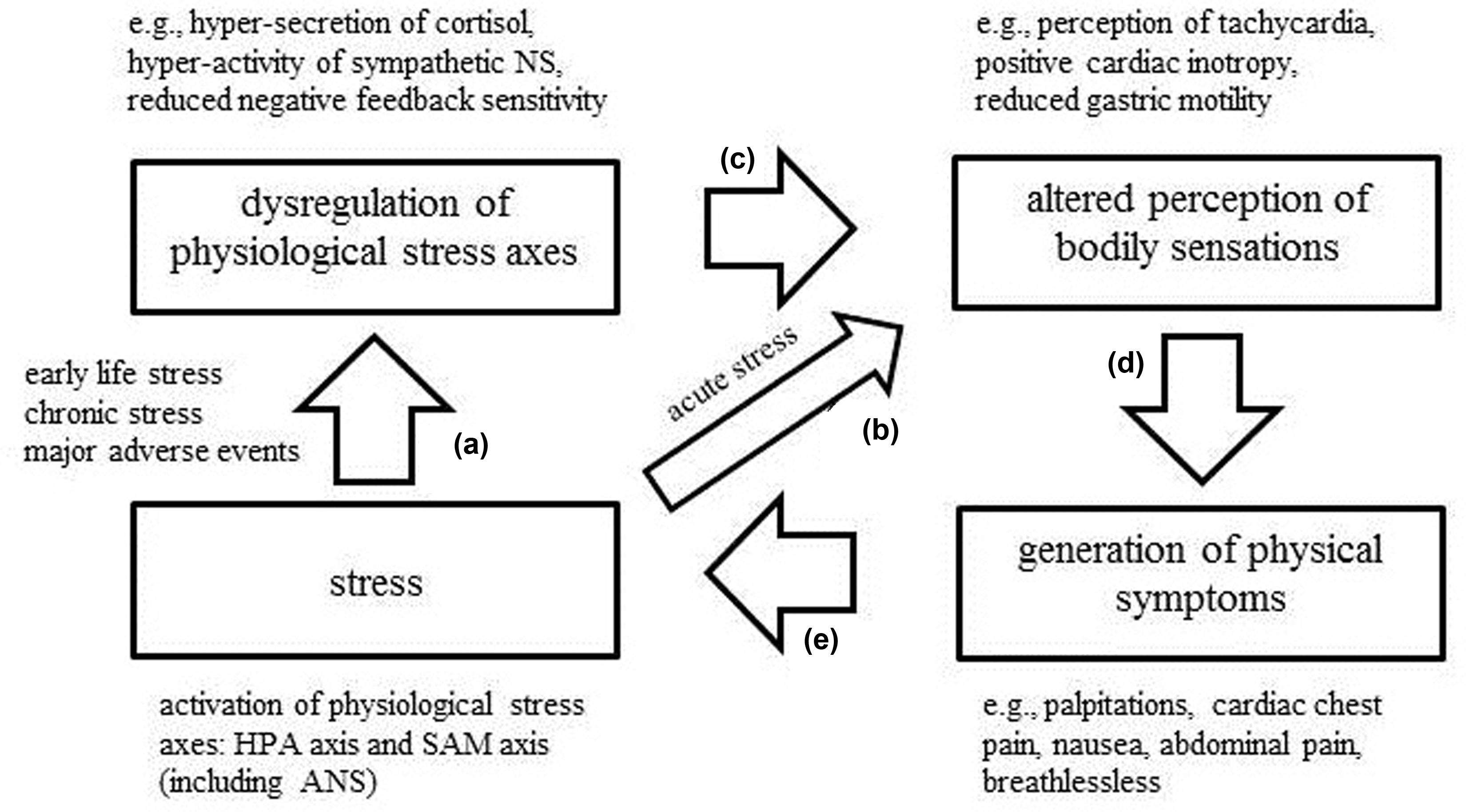 Frontiers | Interoception and stress | Psychology