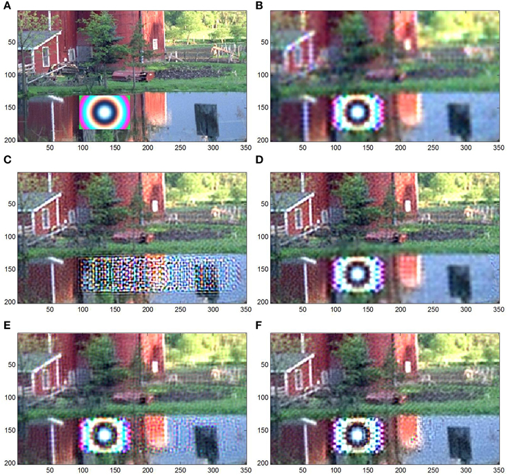 Frontiers | Robust super-resolution by fusion of interpolated frames