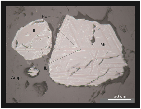 Frontiers Is The Neoproterozoic Oxygen Burst A