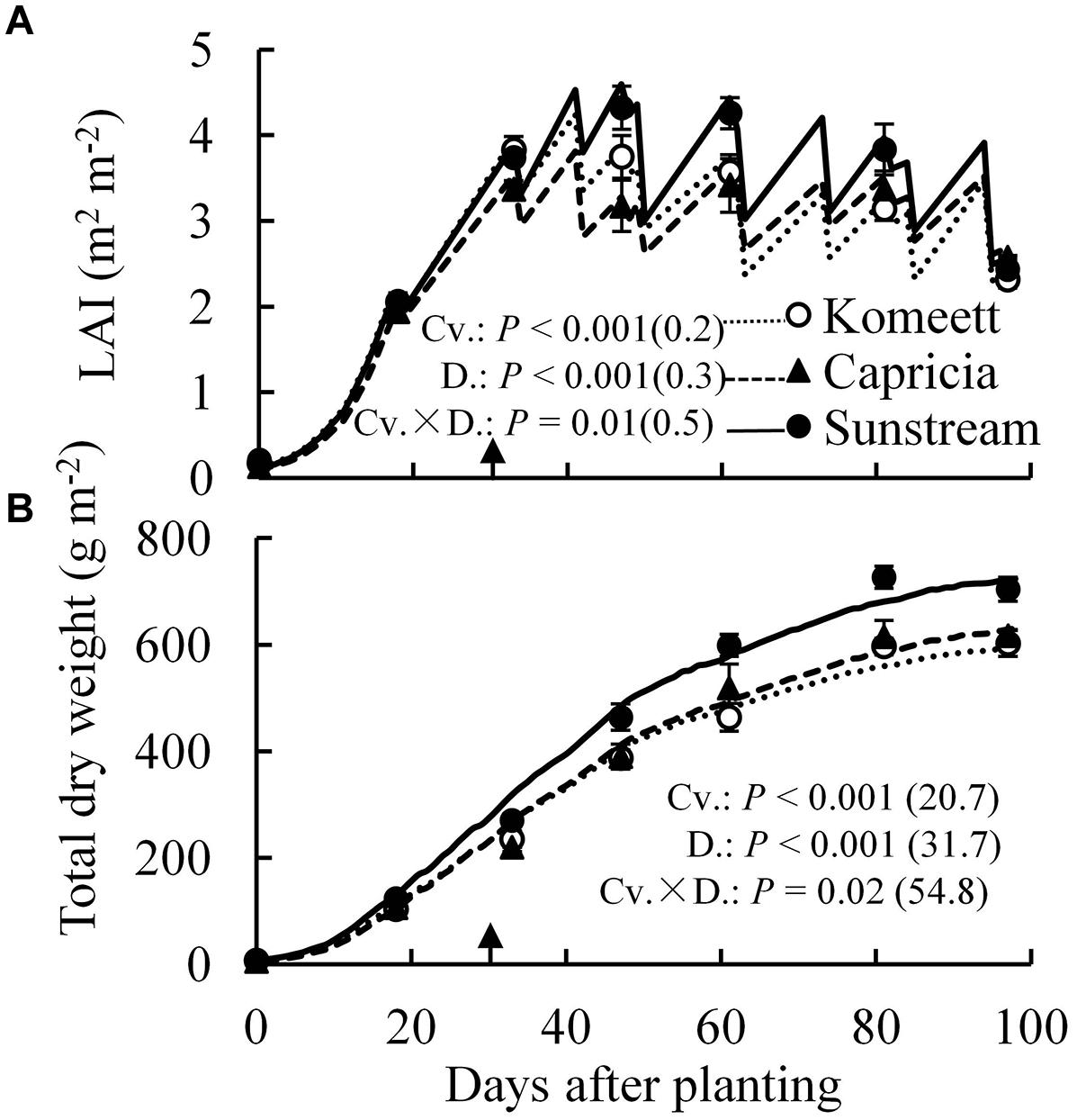 Frontiers quantifying the sourcesink balance and carbohydrate frontiersin biocorpaavc