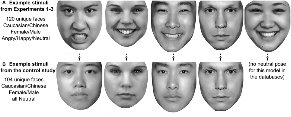 Facial Appearance Gender And Emotion Expression
