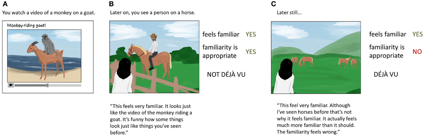 Figure 1 - What is and what is not a déjà vu experience?