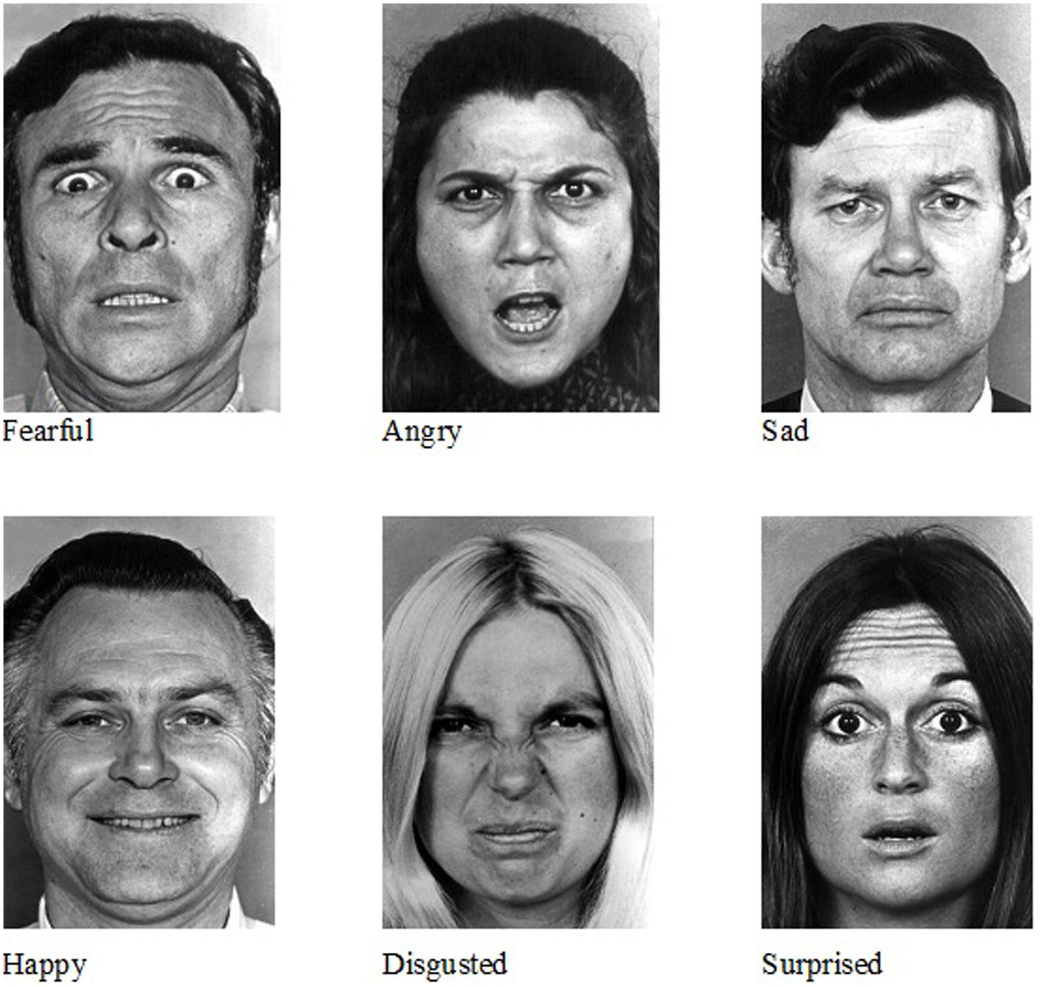 Autism facial expression recognition test