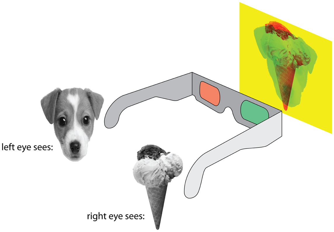 Figure 1 - There are many ways to show two different images to the two eyes so that the left and right eyes see different things.