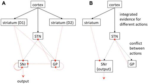 multiple choice questions on vertebrates and invertebrates