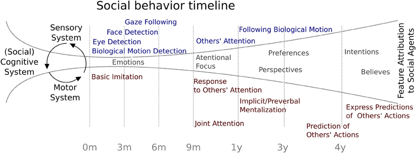 Cognition And Behavior Attention >> Frontiers Development Of Social Skills In Children Neural And
