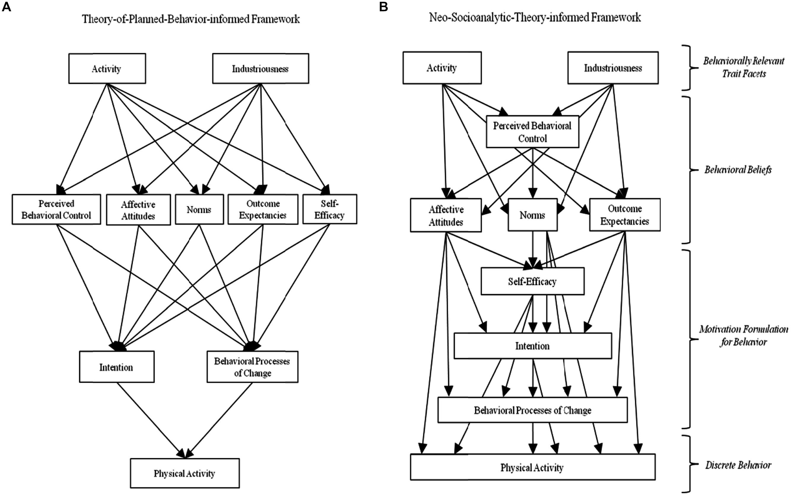 Frontiers Testing Theory Of Planned Behavior And Neo Socioanalytic