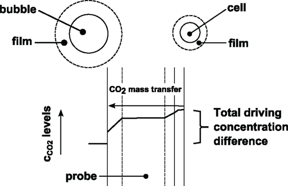 Frontiers | CO2 – Intrinsic Product, Essential Substrate